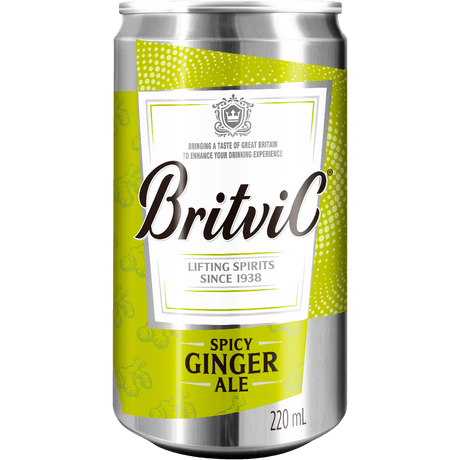 mixer-britvic-ginger-ale-220ml
