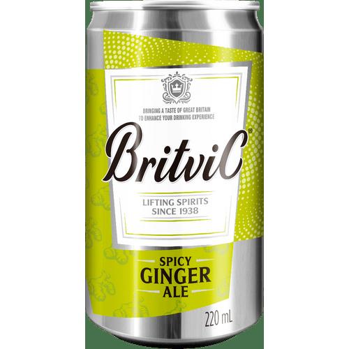 mixer-britvic-ginger-ale-220ml